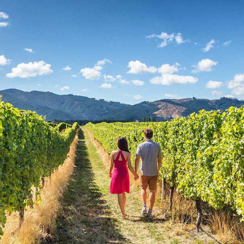 Looking for a Wine Getaway? Think West Kelowna