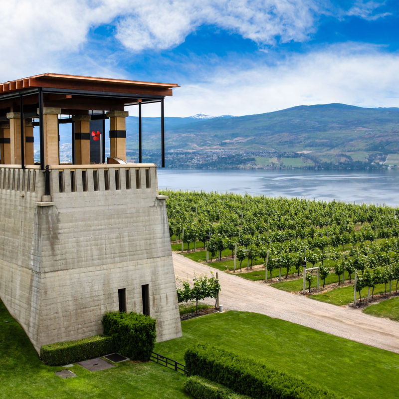 Distinctly Okanagan Wine Tour