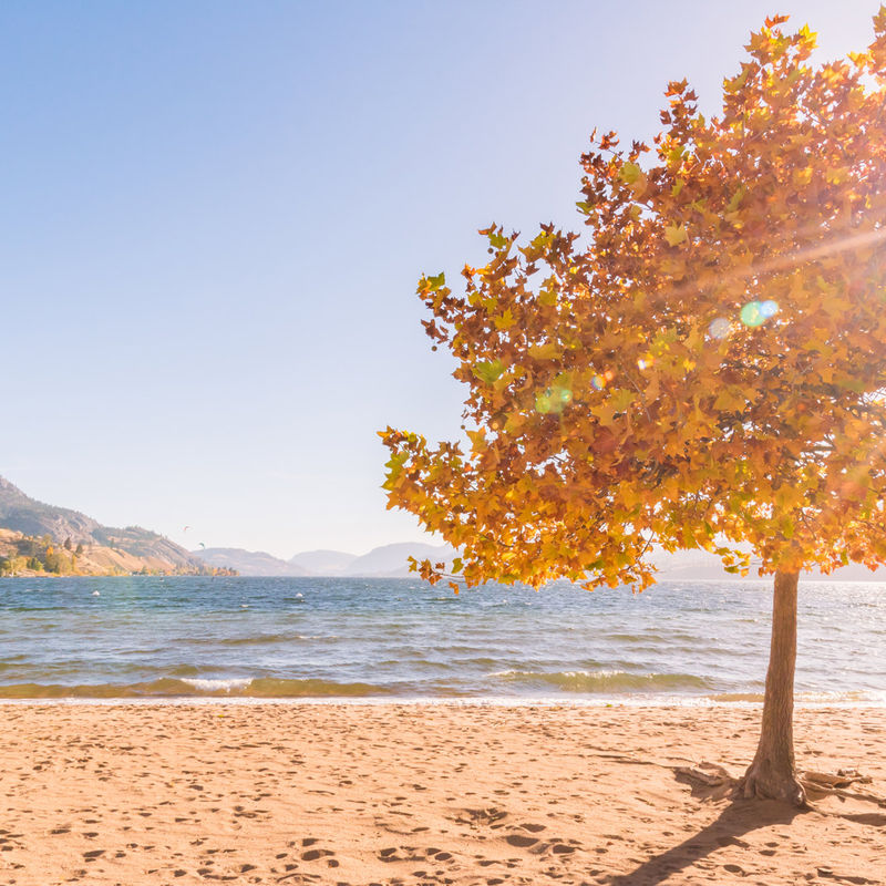 5 Ways to Spark Romance with a Fall Getaway to our Hotel in West Kelowna